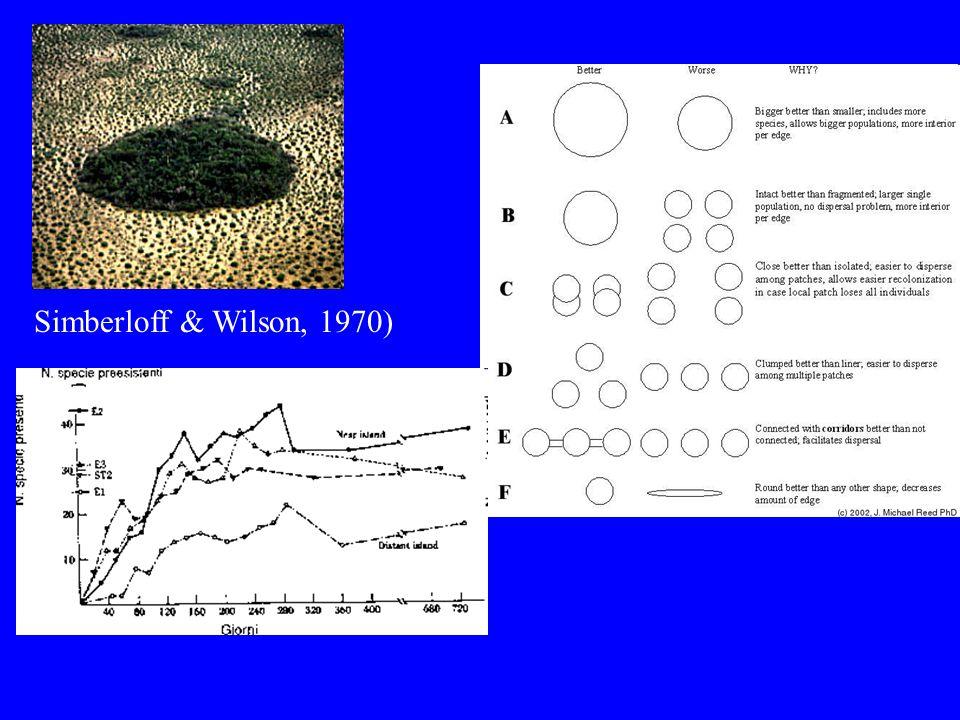 Simberloff & Wilson, 1970)
