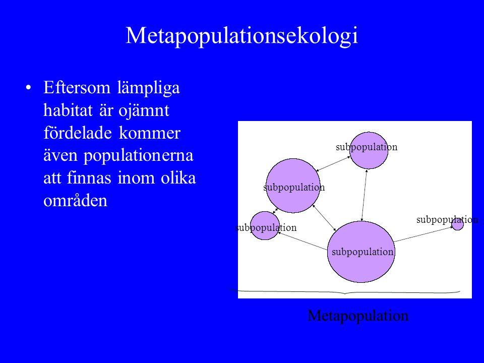 Metapopulationsekologi Eftersom lämpliga habitat är ojämnt fördelade kommer även populationerna att finnas inom olika områden subpopulation Metapopula