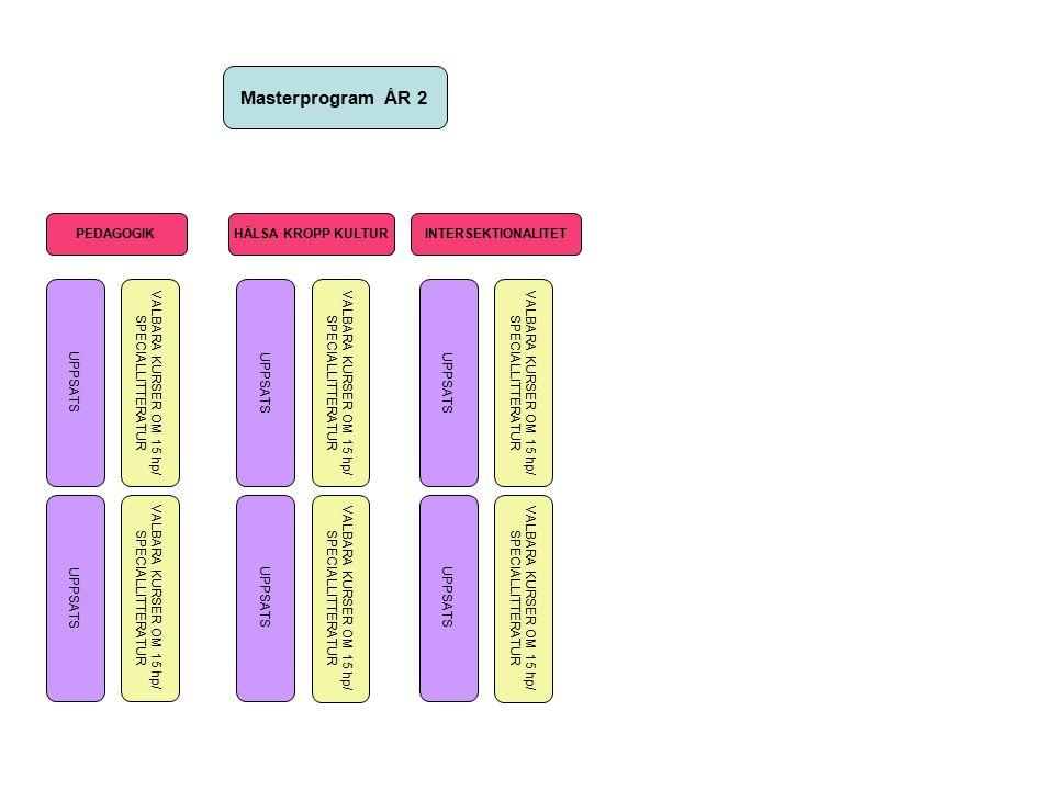 FRISTÅENDE KURSER HÖST Barnets rättigheter som tvärvetenskapligt område (BUV/Cfb) Den moderna pedagogikens idéhistoria Teoretiska perspektiv på etnicitet och migration Mening och social konstruktion Kant(ianer) om pedagogik Självbilds- konstruktioner och normalitet Normalitet och avvikelse Educational Management and Leadership (IIE) Human Rights and Citizenship Education (IIE ) Introduktion Hälsa, kropp, kultur Delaktighet som social process I + II Educational Reform (IIE)