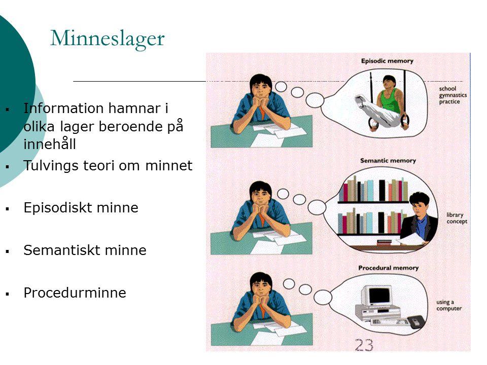 23 Minneslager  Information hamnar i olika lager beroende på innehåll  Tulvings teori om minnet  Episodiskt minne  Semantiskt minne  Procedurminn