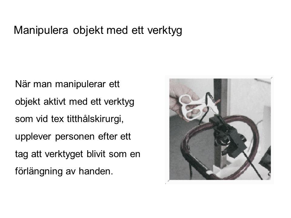 När man manipulerar ett objekt aktivt med ett verktyg som vid tex titthålskirurgi, upplever personen efter ett tag att verktyget blivit som en förläng