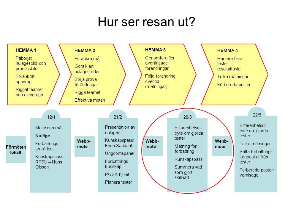 Hur ser resan ut? Motiv och mål Nuläge Förbättrings- områden Kunskapspass: RFSU – Hans Olsson 12/1 Presentation av nulägen Kunskapspass: Frida Sandahl