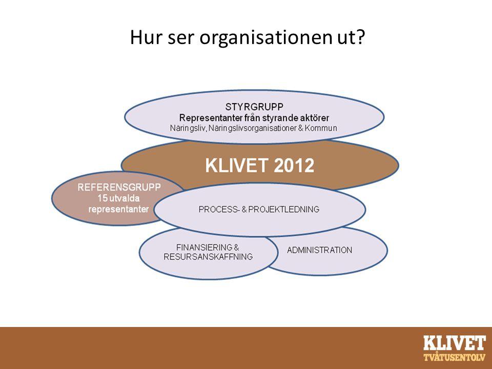 Hur ser organisationen ut?