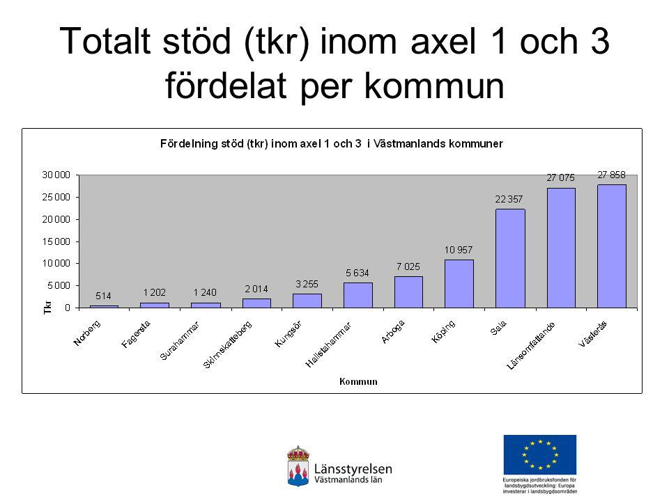 Inom axel 3 har 805 tkr fördelat på 9 ärenden gått till Skinnskatteberg