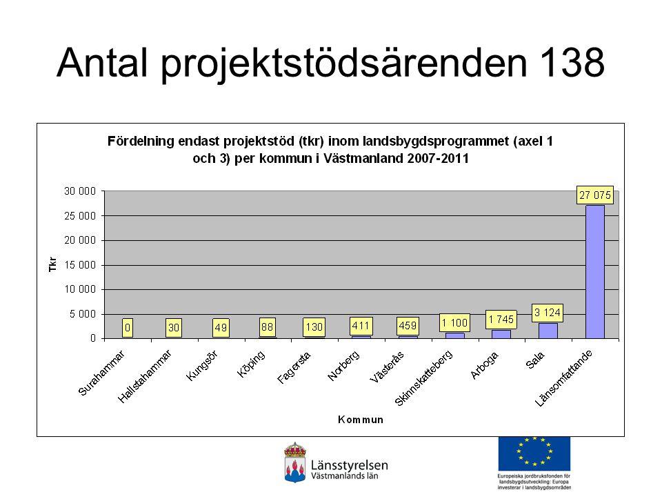 Antal projektstödsärenden 138