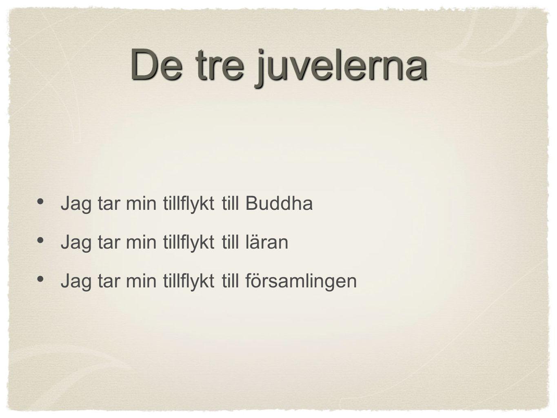 Viktiga skillnader Buddha - människa eller Gud Religiösa ideal - Arhat eller bodhisattva Nirvana - Tillstånd eller paradis Hur nå befrielse - På egen hand eller med hjälp