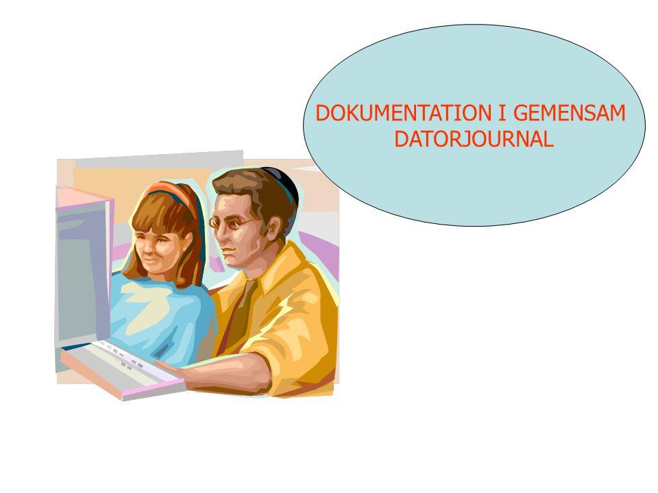 DOKUMENTATION I GEMENSAM DATORJOURNAL