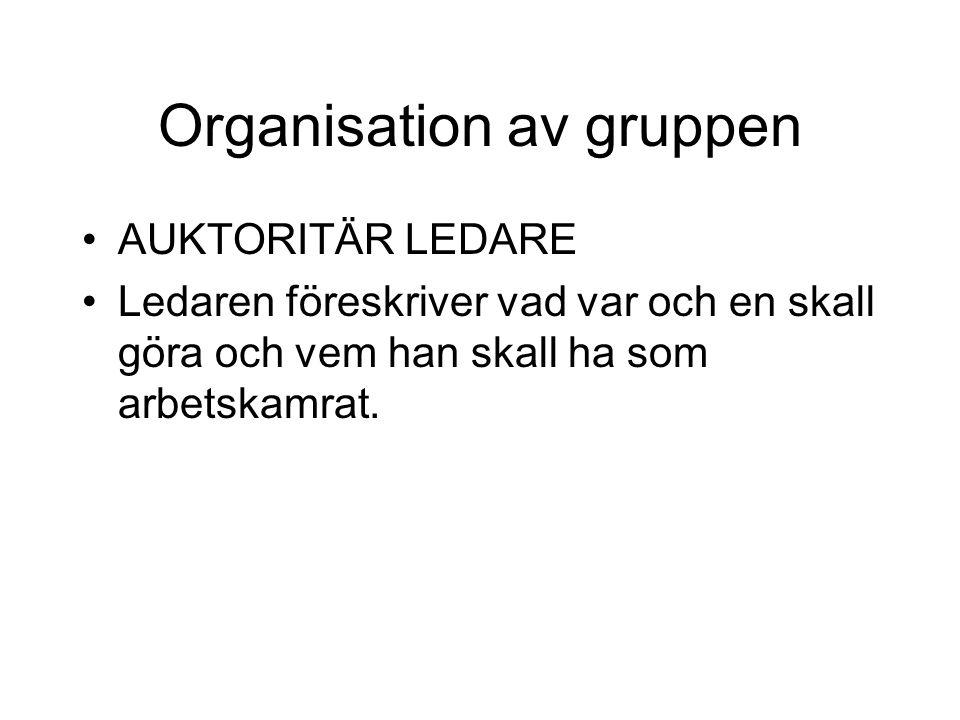 Organisation av gruppen AUKTORITÄR LEDARE Ledaren föreskriver vad var och en skall göra och vem han skall ha som arbetskamrat.