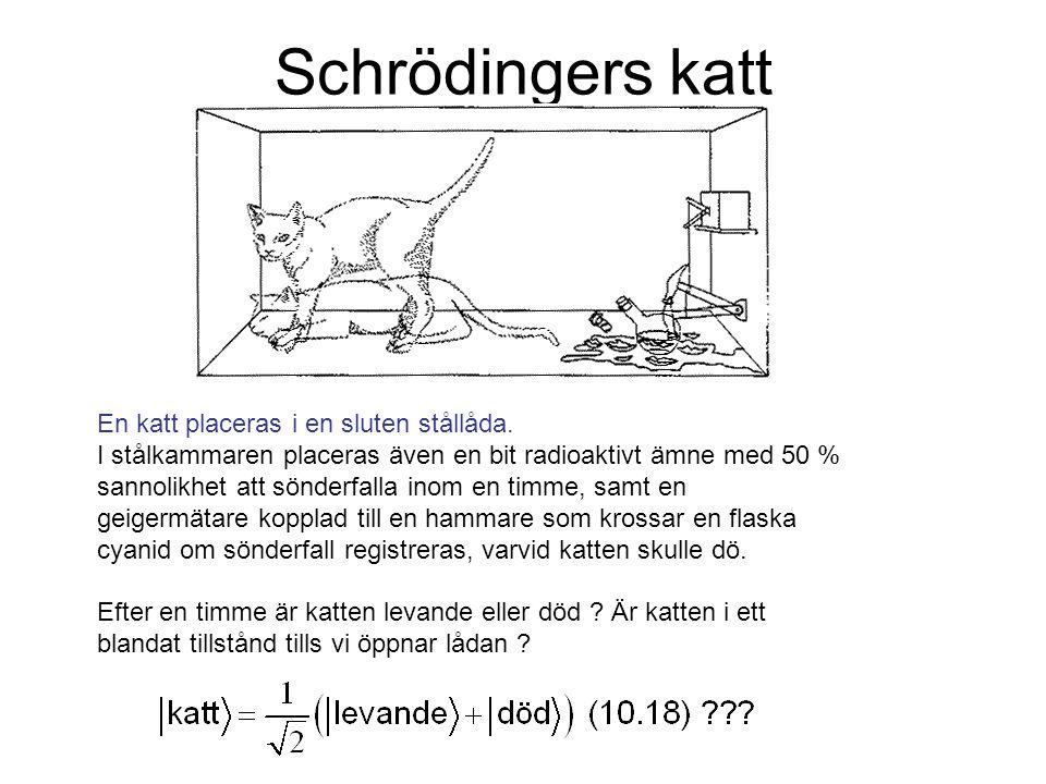 Schrödingers katt En katt placeras i en sluten stållåda. I stålkammaren placeras även en bit radioaktivt ämne med 50 % sannolikhet att sönderfalla ino