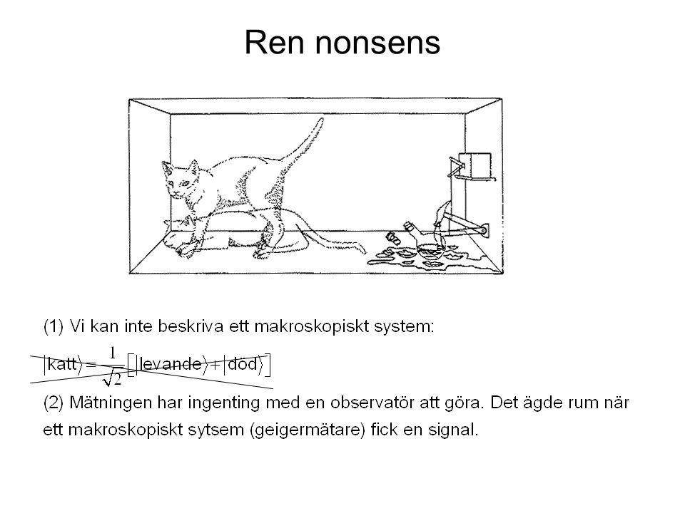 Ren nonsens