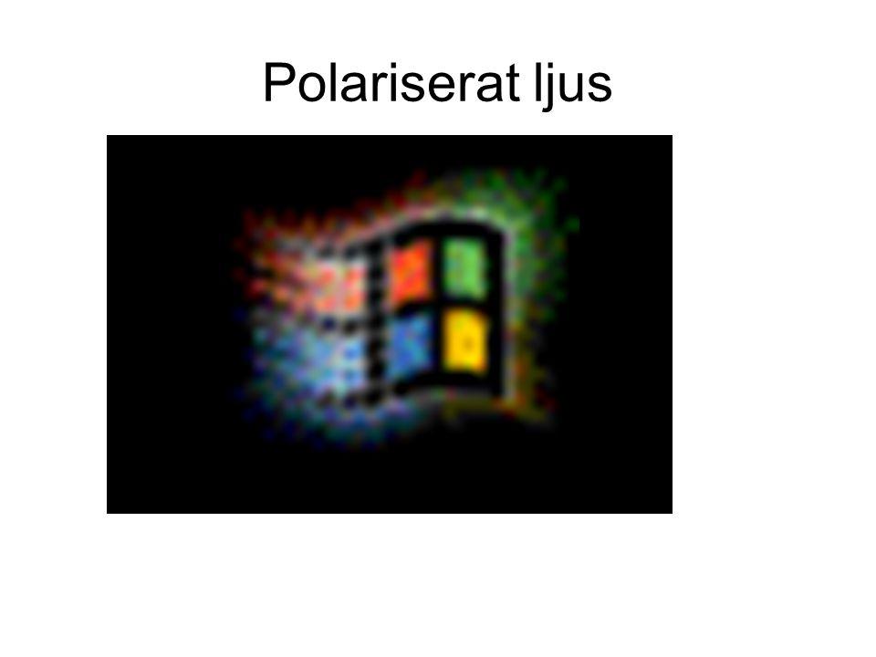 Polariserat ljus