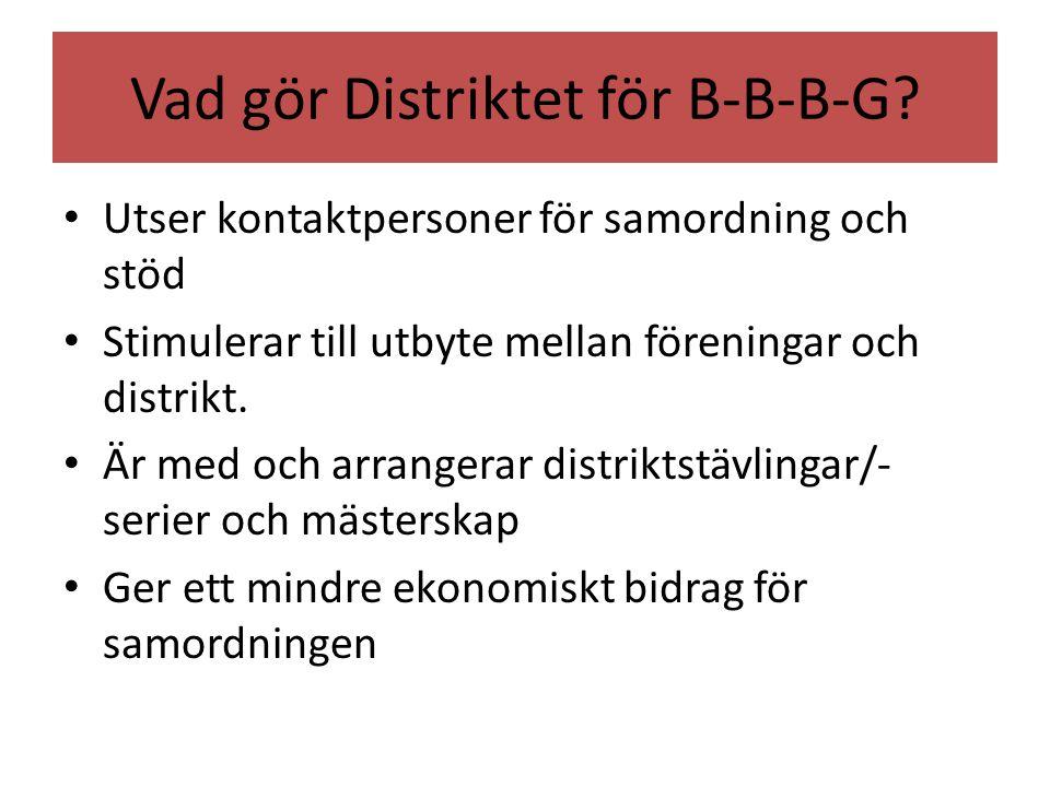 Vad gör Distriktet för B-B-B-G.