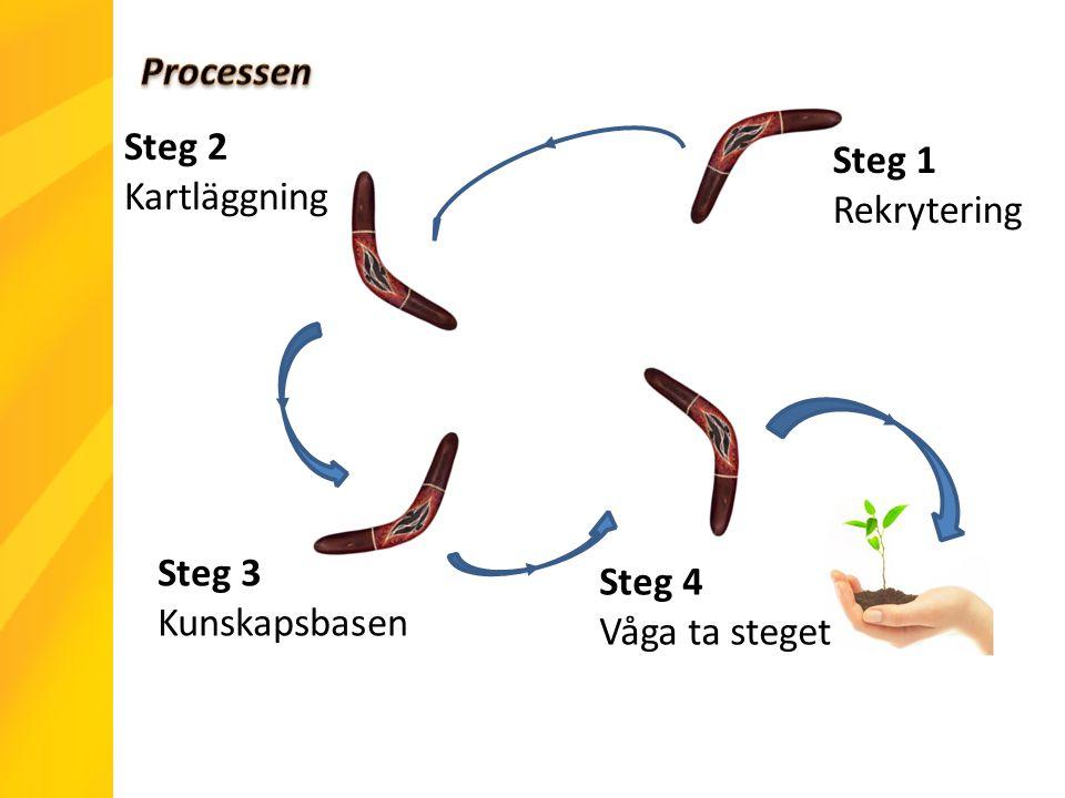 Steg 3 Kunskapsbasen Steg 1 Rekrytering Steg 4 Våga ta steget Steg 2 Kartläggning