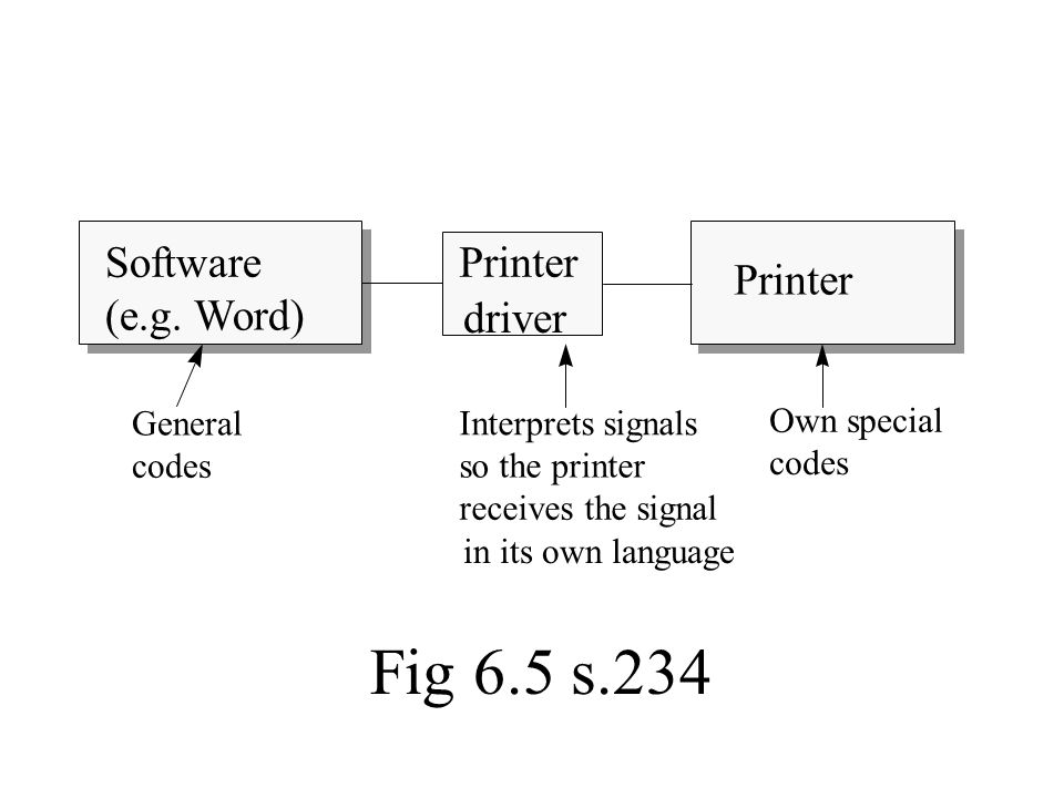Software (e.g. Word) Printer driver General codes Interprets signals so the printer receives the signal in its own language Own special codes Fig 6.5