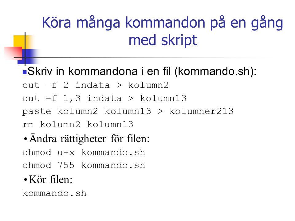 Köra många kommandon på en gång med skript Skriv in kommandona i en fil (kommando.sh): cut –f 2 indata > kolumn2 cut –f 1,3 indata > kolumn13 paste kolumn2 kolumn13 > kolumner213 rm kolumn2 kolumn13 Ändra rättigheter för filen: chmod u+x kommando.sh chmod 755 kommando.sh Kör filen: kommando.sh
