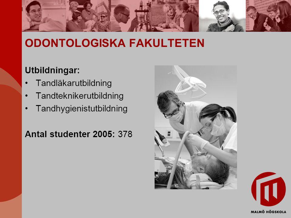 ODONTOLOGISKA FAKULTETEN Utbildningar: Tandläkarutbildning Tandteknikerutbildning Tandhygienistutbildning Antal studenter 2005: 378