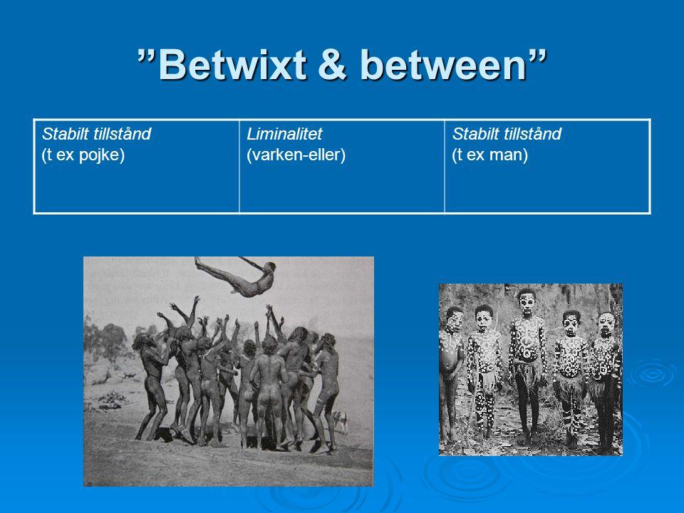 """Betwixt & between"" Stabilt tillstånd (t ex pojke) Liminalitet (varken-eller) Stabilt tillstånd (t ex man)"
