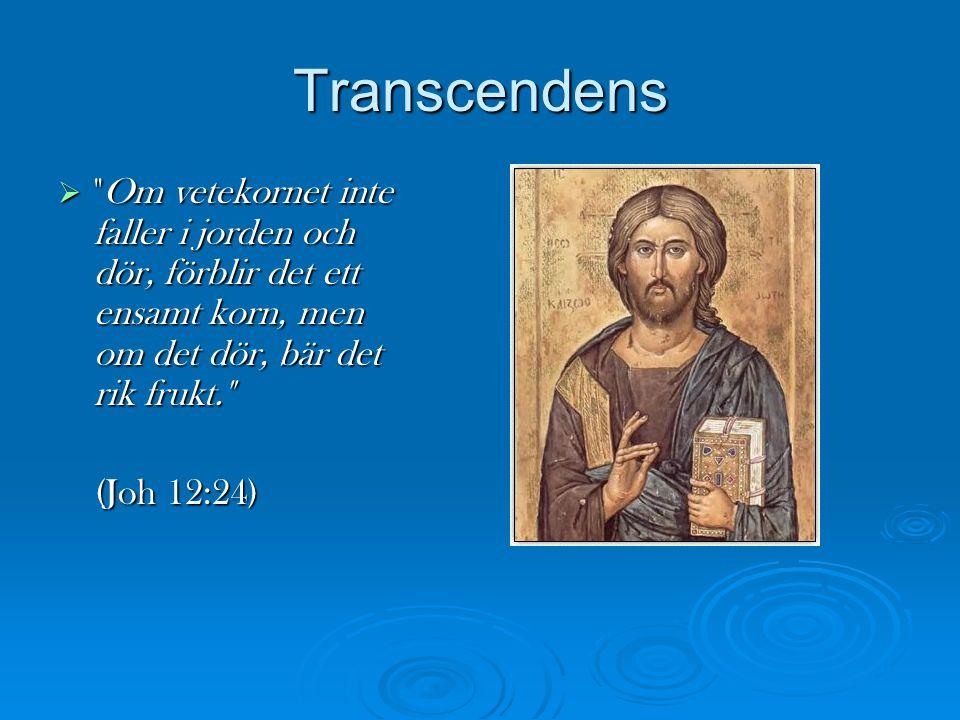Transcendens 