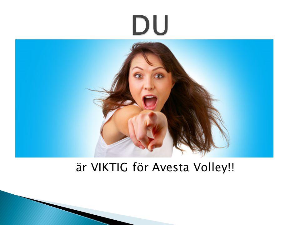 är VIKTIG för Avesta Volley!!