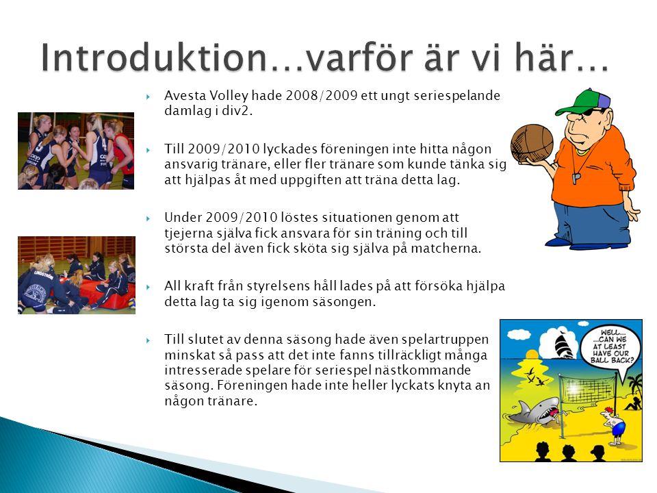  Avesta Volley hade 2008/2009 ett ungt seriespelande damlag i div2.