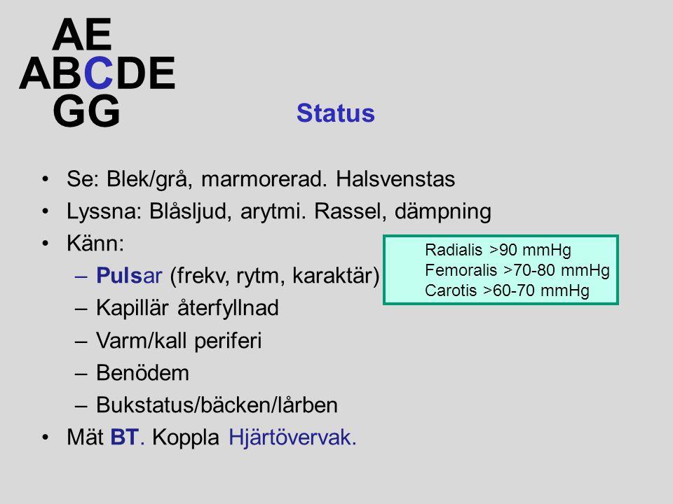 ABCDE AE GG Status Se: Blek/grå, marmorerad. Halsvenstas Lyssna: Blåsljud, arytmi. Rassel, dämpning Känn: –Pulsar (frekv, rytm, karaktär) –Kapillär åt