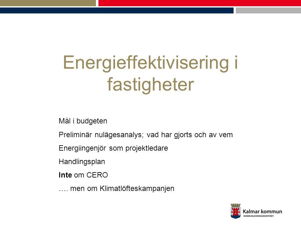 Energieffektivisering i fastigheter Mål i budgeten Preliminär nulägesanalys; vad har gjorts och av vem Energiingenjör som projektledare Handlingsplan