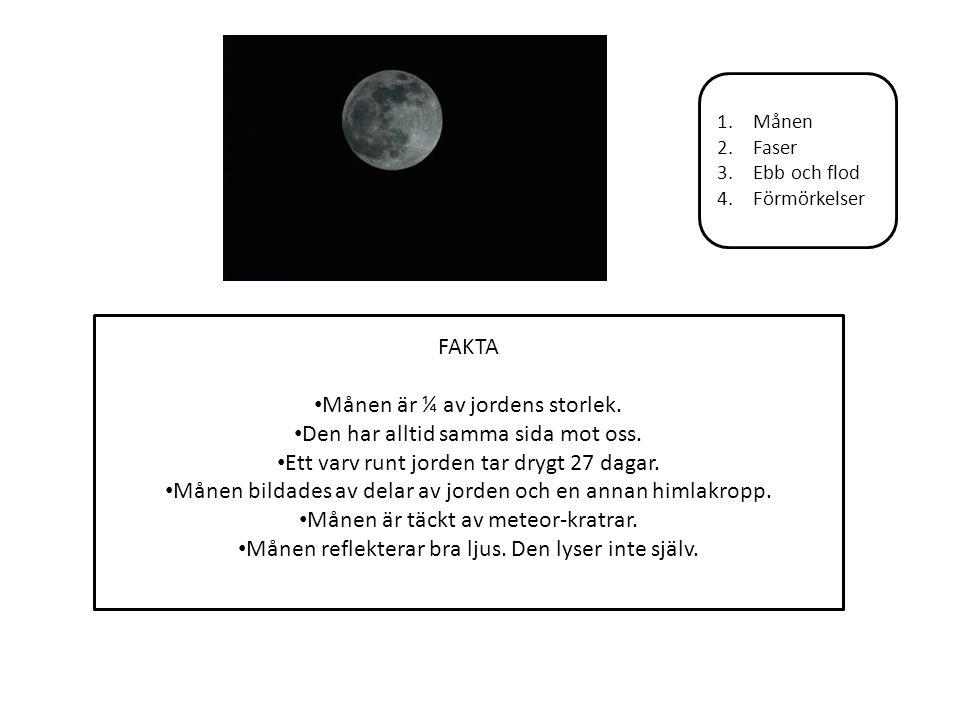 1.Månen 2.Faser 3.Ebb och flod 4.Förmörkelser FAKTA Månen är ¼ av jordens storlek. Den har alltid samma sida mot oss. Ett varv runt jorden tar drygt 2