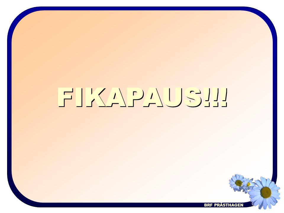 FIKAPAUS!!!