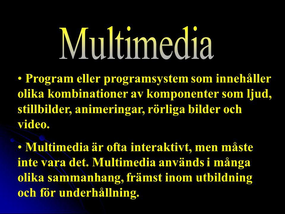 Program eller programsystem som innehåller olika kombinationer av komponenter som ljud, stillbilder, animeringar, rörliga bilder och video.