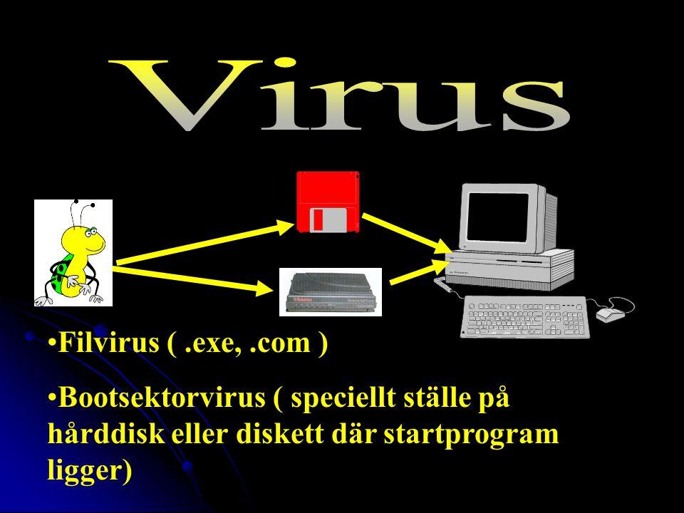 Filvirus (.exe,.com ) Bootsektorvirus ( speciellt ställe på hårddisk eller diskett där startprogram ligger)