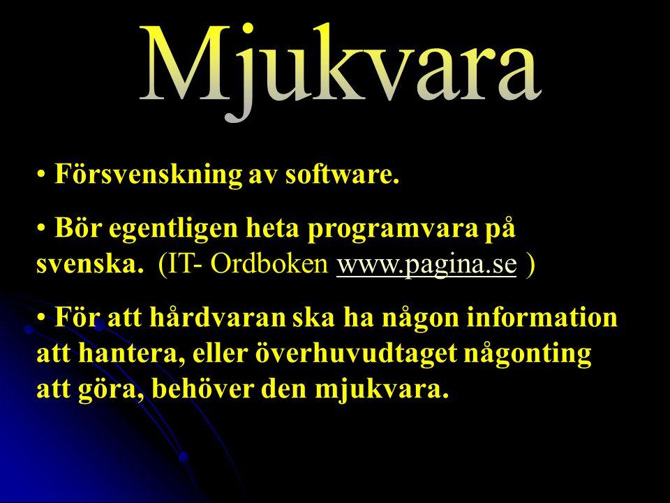 Försvenskning av software.Bör egentligen heta programvara på svenska.
