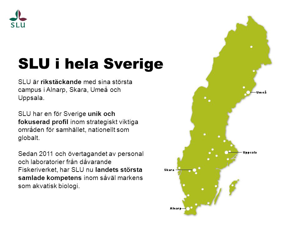 SLU är rikstäckande med sina största campus i Alnarp, Skara, Umeå och Uppsala. SLU har en för Sverige unik och fokuserad profil inom strategiskt vikti