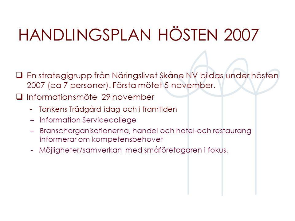 HANDLINGSPLAN HÖSTEN 2007  En strategigrupp från Näringslivet Skåne NV bildas under hösten 2007 (ca 7 personer). Första mötet 5 november.  Informati