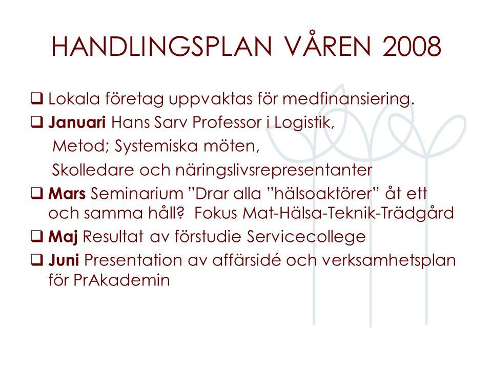 HANDLINGSPLAN VÅREN 2008  Lokala företag uppvaktas för medfinansiering.  Januari Hans Sarv Professor i Logistik, Metod; Systemiska möten, Skolledare