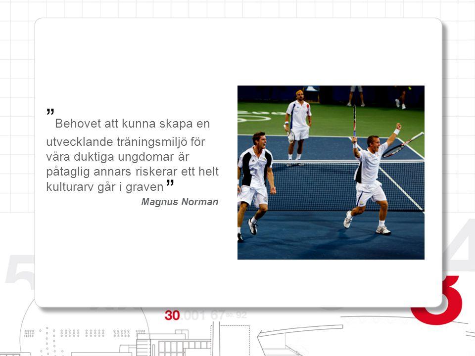 Ett kulturarv att förvalta  Växande motionsidrott - bidrar till förbättrad hälsa  SvTF centralt saknar resurser  Ofantliga investeringar görs utomlands på tennis  Stockholm ingen tradition att producera tennisspelare  En egen arena för Davis Cup eller FED Cup och SO
