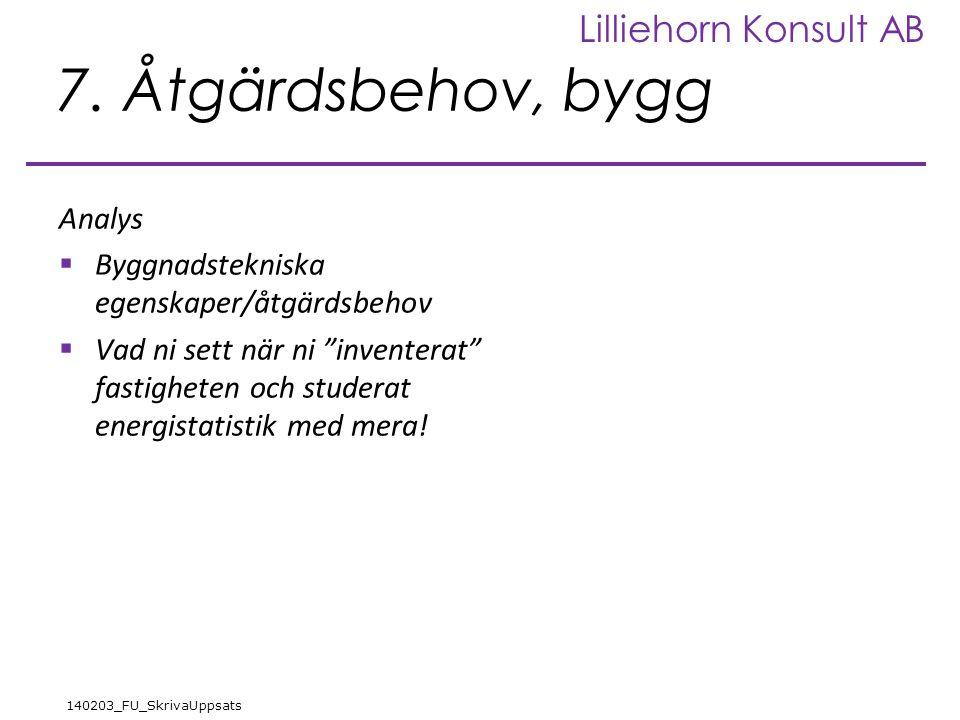 Lilliehorn Konsult AB 140203_FU_SkrivaUppsats 7.