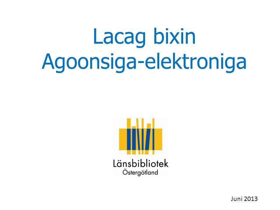 Lacag bixin Agoonsiga-elektroniga Juni 2013