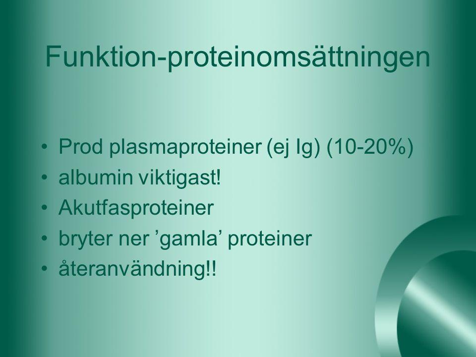 Funktion-proteinomsättningen Prod plasmaproteiner (ej Ig) (10-20%) albumin viktigast! Akutfasproteiner bryter ner 'gamla' proteiner återanvändning!!