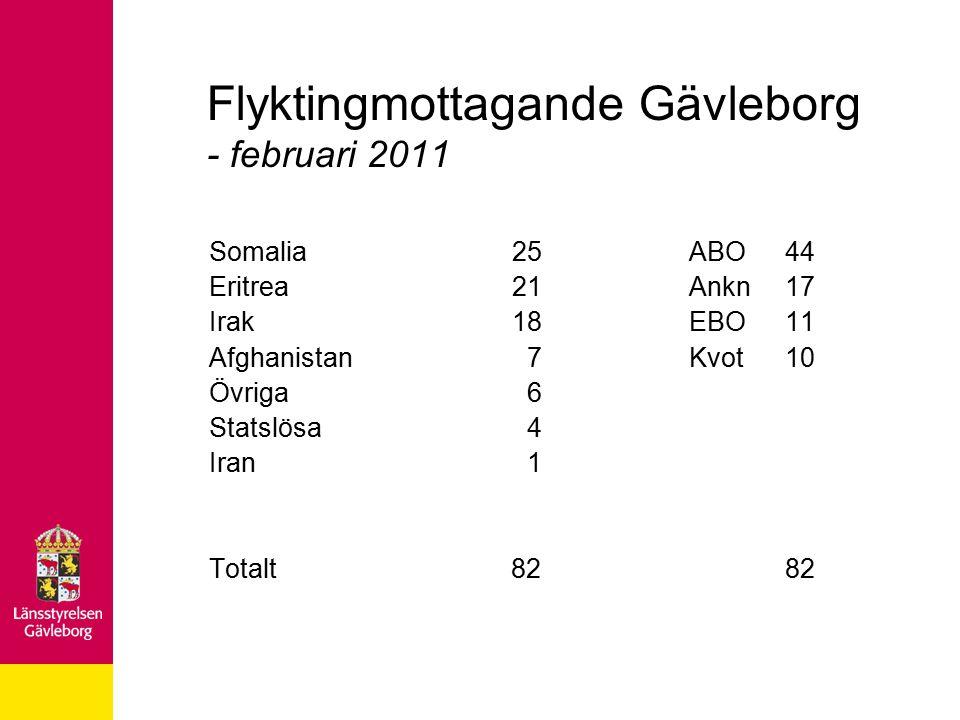 Flyktingmottagande Gävleborg - februari 2011 Somalia 25ABO44 Eritrea 21Ankn17 Irak 18EBO11 Afghanistan 7 Kvot 10 Övriga 6 Statslösa 4 Iran 1 Totalt 82