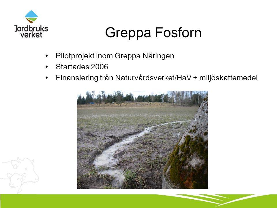 Greppa Fosforn Pilotprojekt inom Greppa Näringen Startades 2006 Finansiering från Naturvårdsverket/HaV + miljöskattemedel