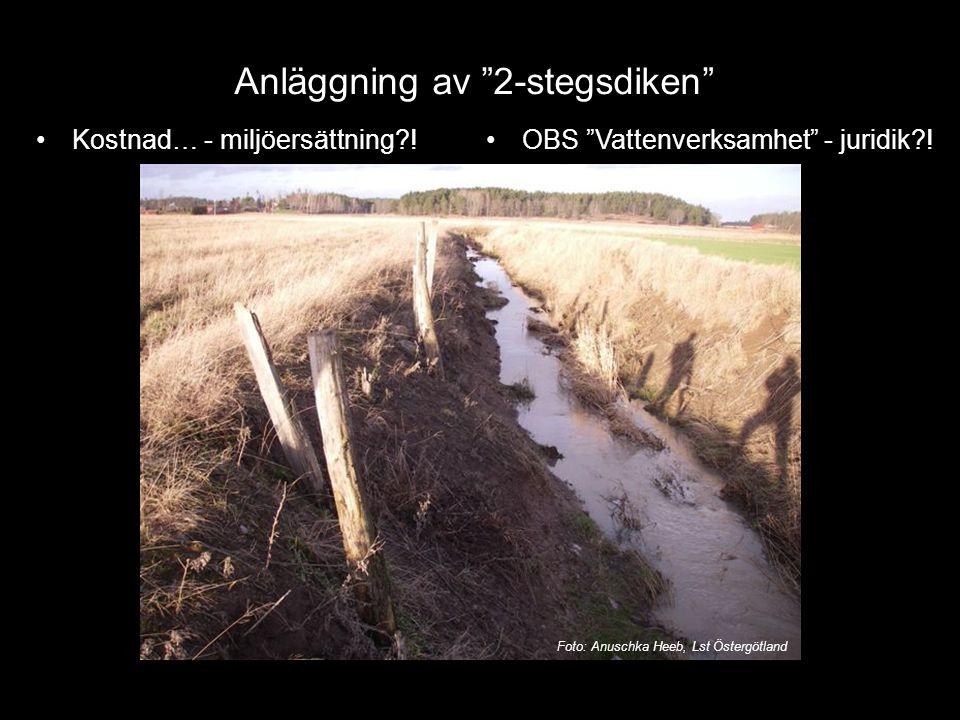 """Kostnad… - miljöersättning?! Anläggning av """"2-stegsdiken"""" OBS """"Vattenverksamhet"""" - juridik?! Foto: Anuschka Heeb, Lst Östergötland"""