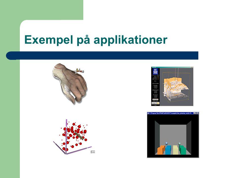 Mjukvaran – H3D API API baserat på x3d – en utvidgning av xml för skapande av 3d-grafik – Visuell och haptisk rendering Framtaget av SenseGraphic och är Open Source Baserat på scengrafprincipen och innehåller noder och attribut