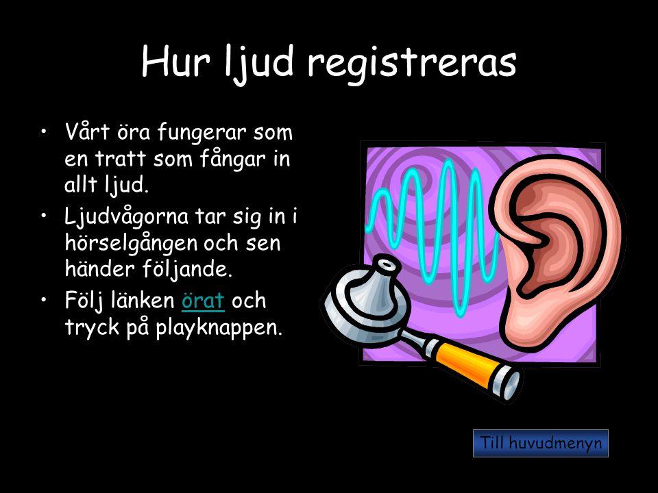Hur ljud registreras Vårt öra fungerar som en tratt som fångar in allt ljud. Ljudvågorna tar sig in i hörselgången och sen händer följande. Följ länke