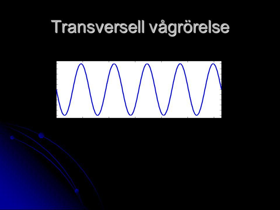 Transversell vågrörelse