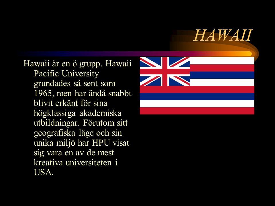 HAWAII Hawaii är en ö grupp.