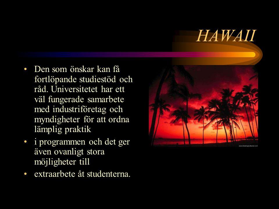 HAWAII Den som önskar kan få fortlöpande studiestöd och råd.