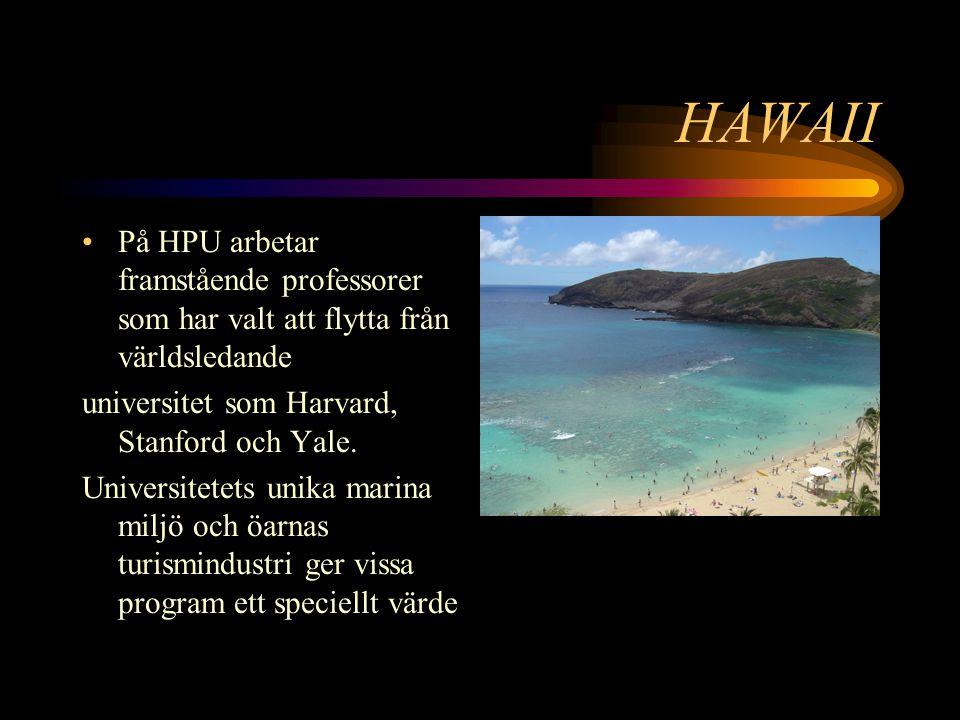 HAWAII På HPU arbetar framstående professorer som har valt att flytta från världsledande universitet som Harvard, Stanford och Yale.