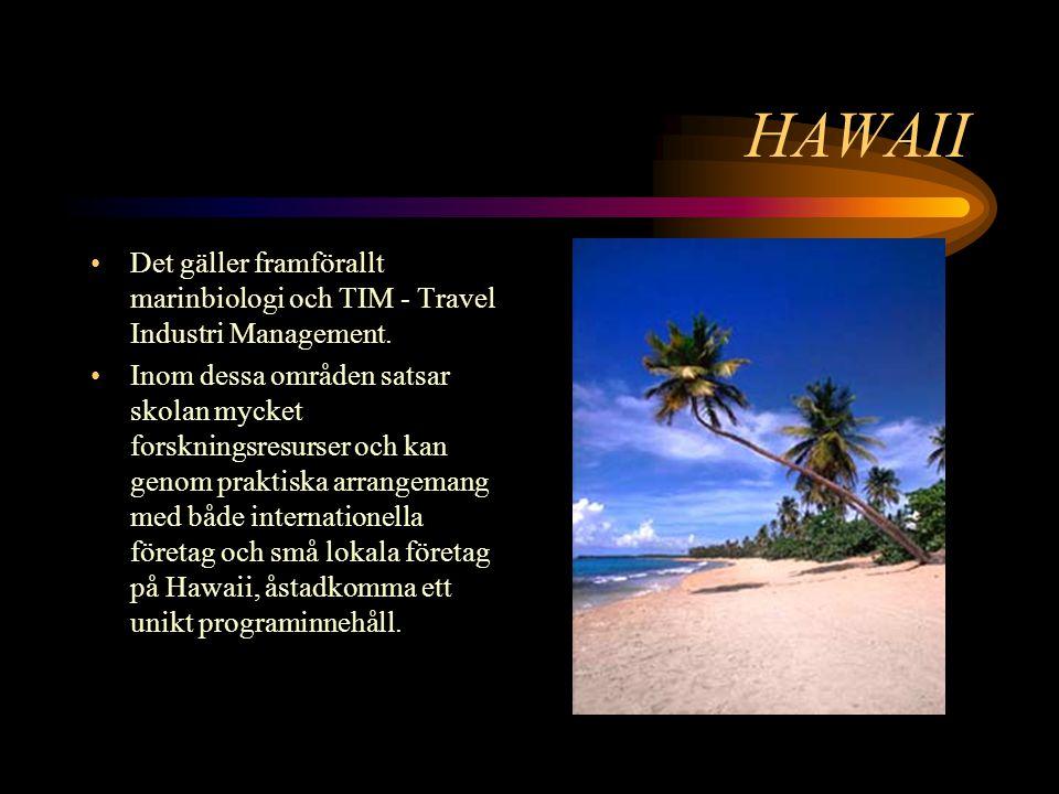 HAWAII Det gäller framförallt marinbiologi och TIM - Travel Industri Management.