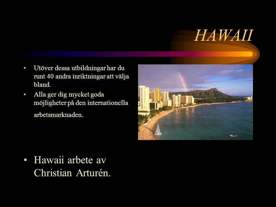 HAWAII Utöver dessa utbildningar har du runt 40 andra inriktningar att välja bland.