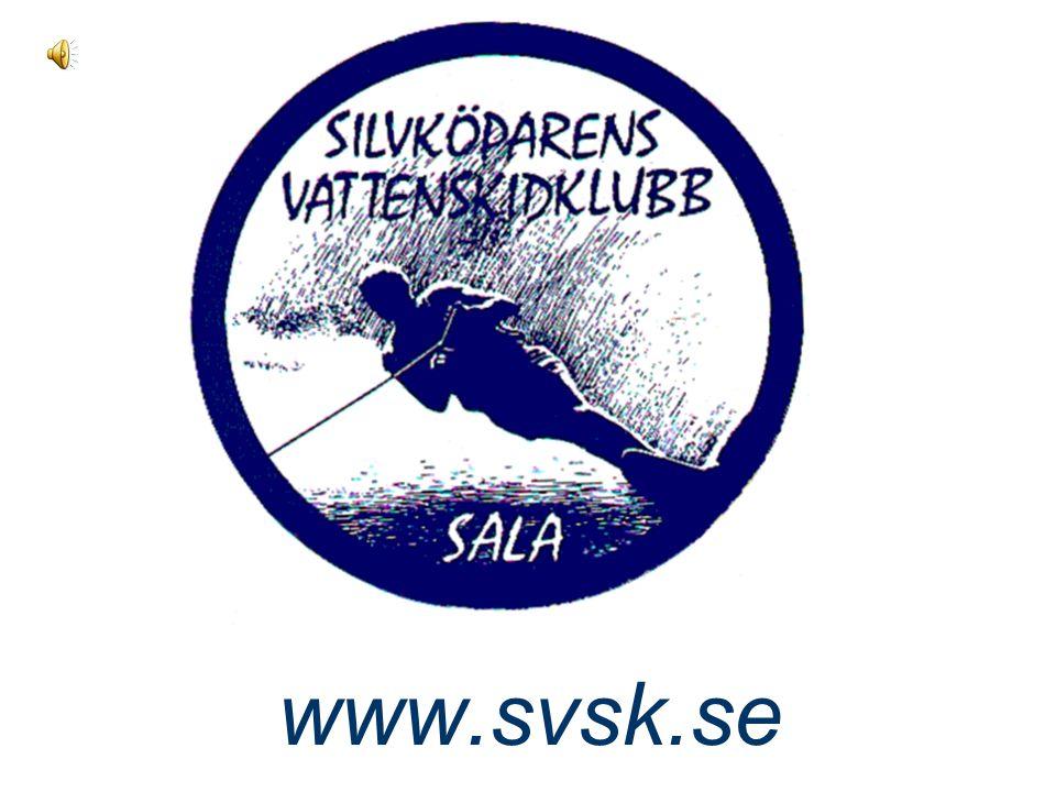 www.svsk.se